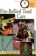 Fire-Bellied Toad Care by Tom Mazorlig